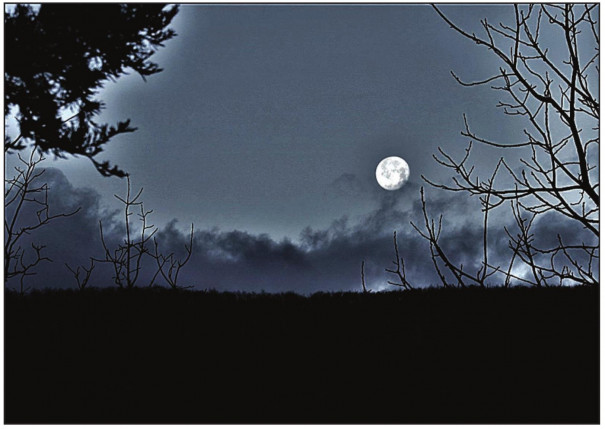 A nearly full moon sets over Rockbridge County early Sunday morning in this photo submitted by Ray Blouin. The first full moon of the new year occurred the night before (Friday- Saturday), although clouds kept it hidden. The next full moon will be seen (or not) on Feb. 9, with a super moon headed our way March 9.