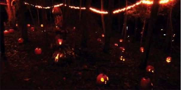 Along The Pumpkin Path
