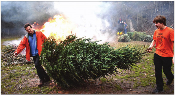 Trees For The Burning