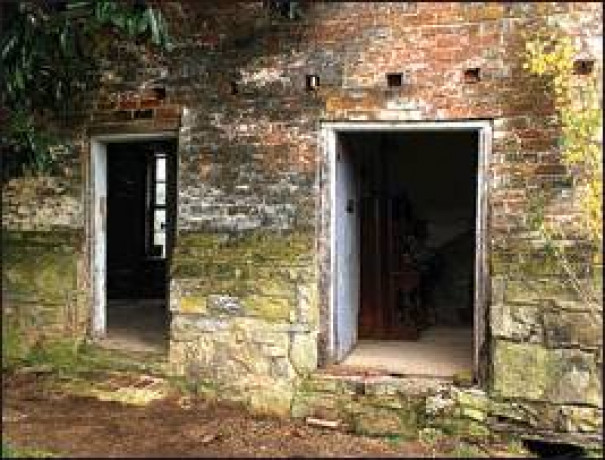 Documenting Slave Dwellings