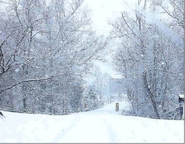 This photo of snow-covered Stuart Road was taken by Mary Helen Nicely.