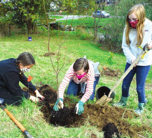 Planting Trees And Growing Education