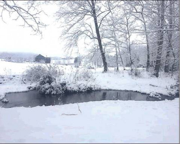 Christy Falls took this farm scene photo in the Fairfield area Tuesday.